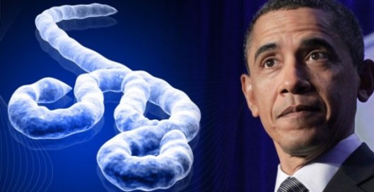 obama-ebola-600x309