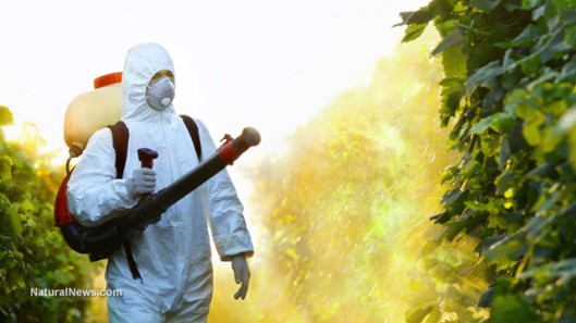 Pesticide-Crops-Grapes-Spray-Protective-Suit-Vineyard