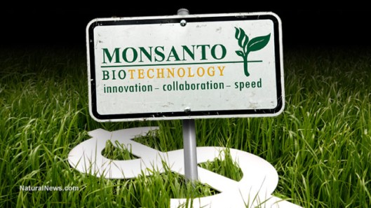 Monsanto-Money-Crops